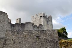 Ross slott Caislean Ross Killarney Ireland Royaltyfri Fotografi