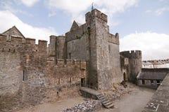 Ross slott Caislean Ross Killarney Ireland Arkivbild