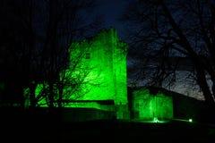 Ross slott på natten. Killarney. Irland Fotografering för Bildbyråer