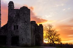 Ross slott på solnedgången. Killarney. Irland Arkivfoton