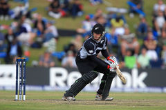 Ross Taylor Stock Photos