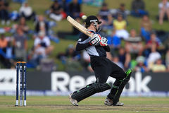 Ross Taylor Royalty Free Stock Photo