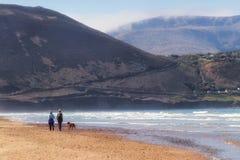 Rossbeigh子线海滩 库存照片