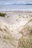 Rossbeigh海滩,凯里郡; 免版税库存照片