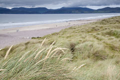 Rossbeigh Beach, County Kerry; Stock Photos