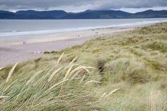 Rossbeigh Beach, County Kerry; Stock Photos