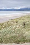 Rossbeigh Beach, County Kerry; Stock Images