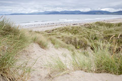 Rossbeigh Beach, County Kerry; Royalty Free Stock Photo