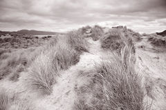 Rossbeigh Beach, County Kerry; Stock Photography