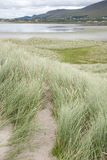 Rossbeigh Beach and Dingle Peninsula, County Kerry Royalty Free Stock Images