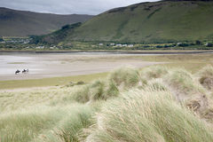 Rossbeigh Beach Horse Riding, County Kerry. Ireland Stock Photo