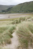 Rossbeigh Beach Horse Riding, County Kerry. Ireland Royalty Free Stock Photo