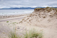 Rossbeigh plaża, okręg administracyjny Kerry; Fotografia Royalty Free