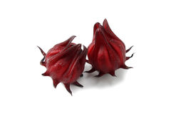 Rosselle Fruit. Hibiscus sabdariffa or roselle fruits isolated on white background Stock Photography