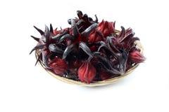 Rosselle Fruit. Hibiscus sabdariffa or roselle fruits isolated on white background stock photo