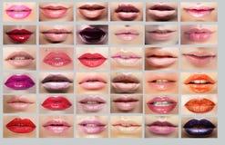 Rossetto Grande varietà di labbra delle donne Insieme del passo Immagini Stock