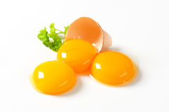 Rossi d'uovo crudi Immagini Stock Libere da Diritti