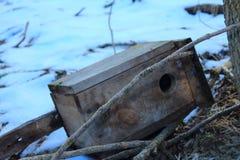 Rossiya.Russkiy les.Skvorechnik. Rossiyskaya.Russkiy forest. The Swordsmith. house for a forest bird, lies on the ground Royalty Free Stock Photography