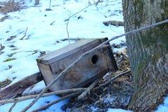Rossiya.Russkiy les.Skvorechnik. Rossiyskaya.Russkiy forest. The Swordsmith. house for a forest bird, lies on the ground Stock Image