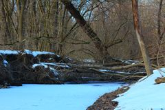 Rossii.Russkiy forest, the forest awakes in spring. The river is covered with ice. Rossiyskaya.Russkiy forest, wakes up the forest in the spring. The river is Royalty Free Stock Images