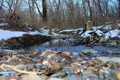 Rossii.Russkiy forest, the forest awakes in spring. The river is covered with ice. Rossiyskaya.Russkiy forest, wakes up the forest in the spring. The river is Royalty Free Stock Image