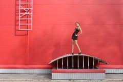 Rosso Fotografie Stock