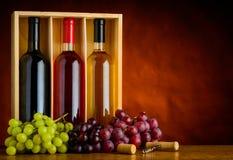 Rosso, bianco e Rose Bottles di vino Immagini Stock