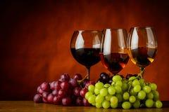 Rosso, bianco e Rose Wine con lo spazio della copia fotografie stock