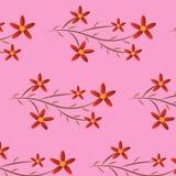 Rosso del fiore del fondo Fotografia Stock Libera da Diritti