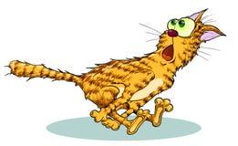 Rosso del gatto nel timore che corre velocemente immagini stock