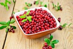 Rosso del Lingonberry in ciotola a bordo Immagine Stock