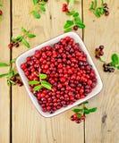Rosso del Lingonberry con le foglie in ciotola a bordo Fotografie Stock