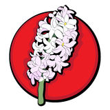 Rosso di clipart del giacinto Fotografie Stock