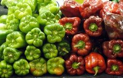 Rosso e peperone verde Immagine Stock Libera da Diritti