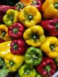Rosso e peperoni verdi al mercato degli agricoltori Fotografie Stock Libere da Diritti