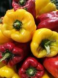 Rosso e peperoni verdi al mercato degli agricoltori Immagini Stock