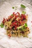 Rosso e ribes bianco su un Libro Bianco fotografia stock
