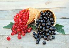 Rosso e ribes nero nei coni della cialda su fondo di legno rustico Dessert dietetico e sano Immagine Stock