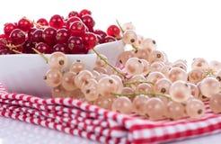 Rosso fresco e ribes bianco immagini stock