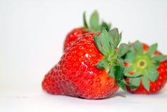 Rosso poco dolce Immagini Stock Libere da Diritti