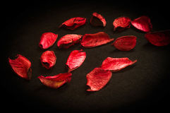 Rosso sul nero Fotografie Stock Libere da Diritti