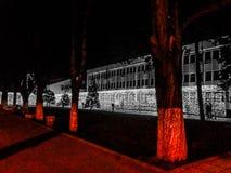 Rosso sulle luci grige Fotografia Stock Libera da Diritti