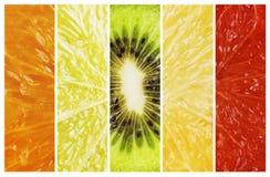 Rosso vibrante alla raccolta della banda dell'agrume della frutta di colore verde Immagine Stock