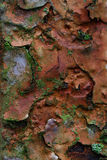 Rost befleckte flockige Farbe Stockfotografie