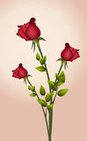 Rost ornate greeting cute card Stock Images