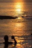 Rosta solnedgången royaltyfri fotografi