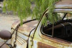 Rostad gammal bil i bruten kulle NSW Aust Royaltyfri Fotografi