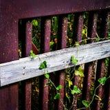 Rostad järn- och träbroräcke Arkivfoto