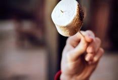 rostad marshmallow Royaltyfria Foton