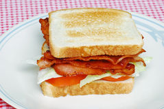 rostad tomat för baconklubbagrönsallat smörgås Arkivfoto